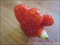 c-k-erdbeere1